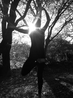 i am tree