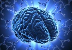 brain_3_SS