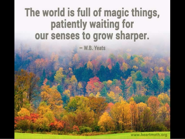 world-is-full-of-magic-things-1-638