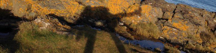 cropped-img_0287.jpg